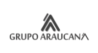 Logo Grupo Araucana